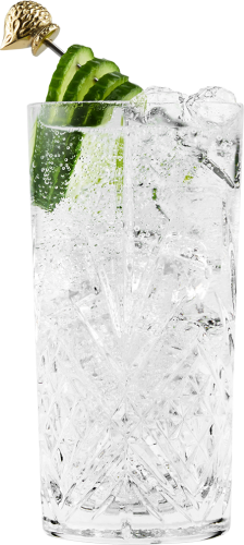 Gin & Tonic Highball - close up