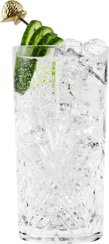 Gin & tonic - close up