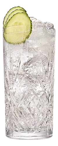 G&T highball close up